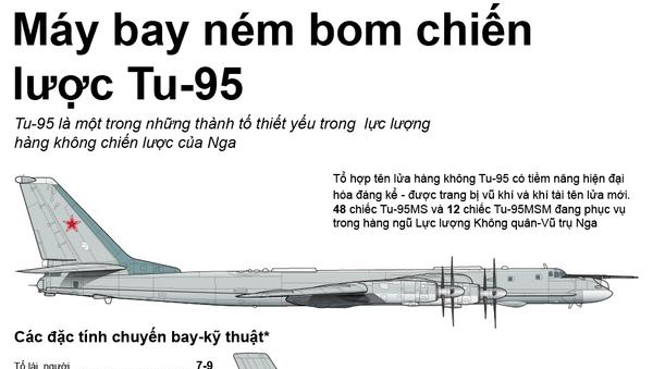 Máy bay ném bom chiến lược Tu-95 - Sputnik Việt Nam