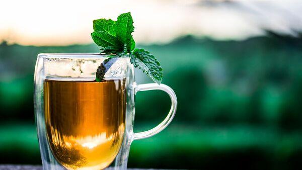 trà xanh - Sputnik Việt Nam