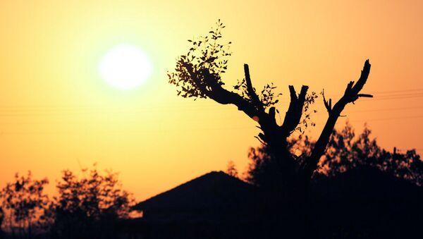 Mặt trời  - Sputnik Việt Nam