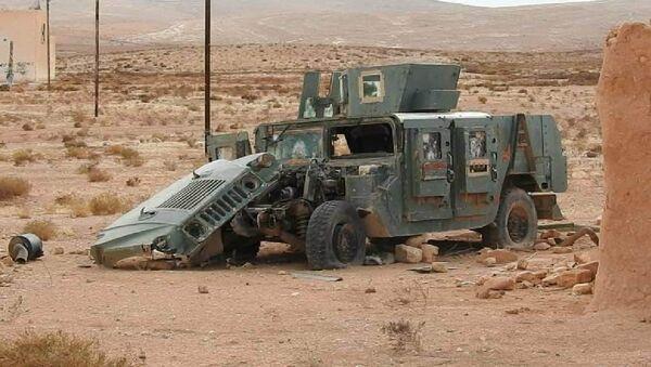 Phát hiện thêm trại IS* huấn luyện chiến binh nhí ở Syria - Sputnik Việt Nam