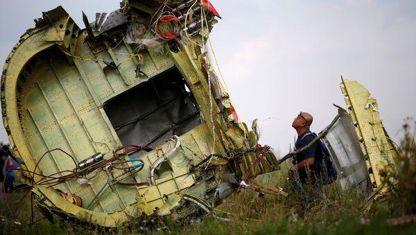 tai nạn máy bay MH17 - Sputnik Việt Nam