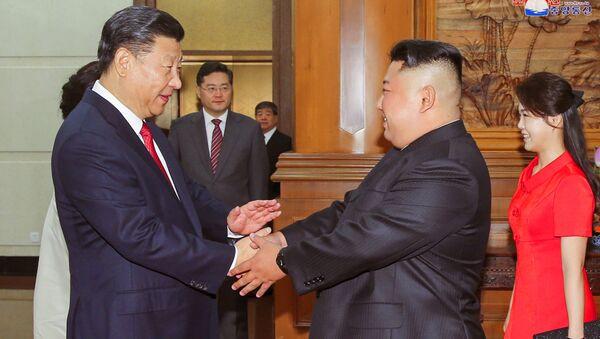 Chủ tịch Tập Cận Bình gặp Kim Jong-un - Sputnik Việt Nam