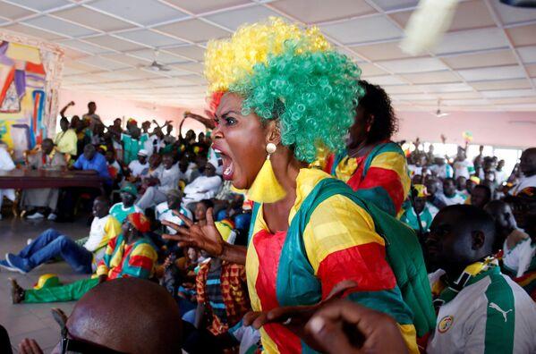 Người hâm mộ đội tuyển quốc gia Senegal trong thời gian trận đấu giữa Nhật Bản và Senegal ở Abidjan, Côte d'Ivoire - Sputnik Việt Nam