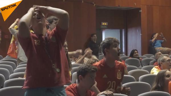 Cảm xúc của người hâm mộ sau những trận đấu đầu tiên của vòng playoff World Cup - Sputnik Việt Nam