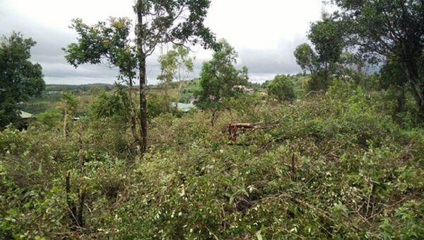 Khu vực đất quốc phòng được cấp sổ đỏ trái phép cho cán bộ ở tỉnh Đắk Nông - Sputnik Việt Nam