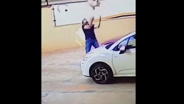 Ở Brazil một người đàn ông kịp chộp được con chó đang rơi từ tầng 9 của một ngôi nhà - Sputnik Việt Nam