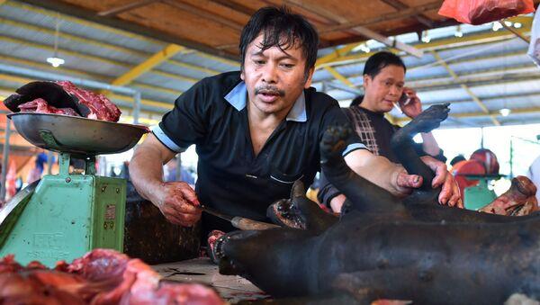 Thịt chó ở Indonesia - Sputnik Việt Nam