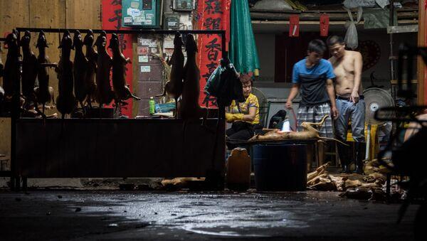Thịt chó ở Trung Quốc - Sputnik Việt Nam