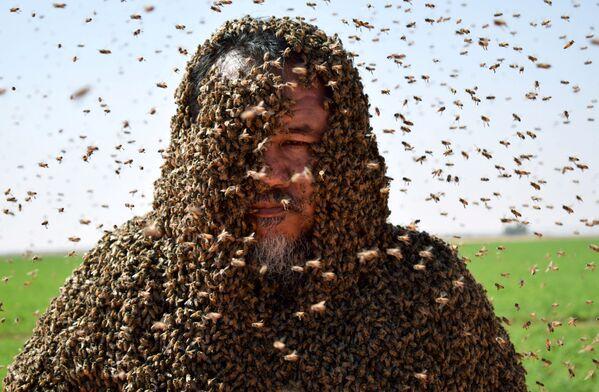 Người đàn ông với đàn ong phủ kín toàn bộ thân thể, Ả Rập Saudi - Sputnik Việt Nam