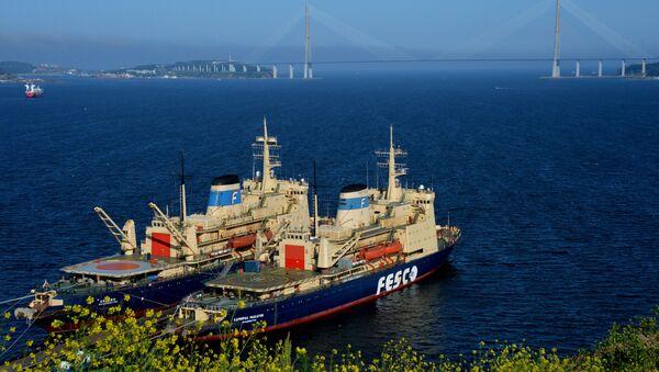 Tàu phá băng của hãng vận tải Nga FESCO - Krasin và Đô đốc Makarov - ở Vladivostok - Sputnik Việt Nam