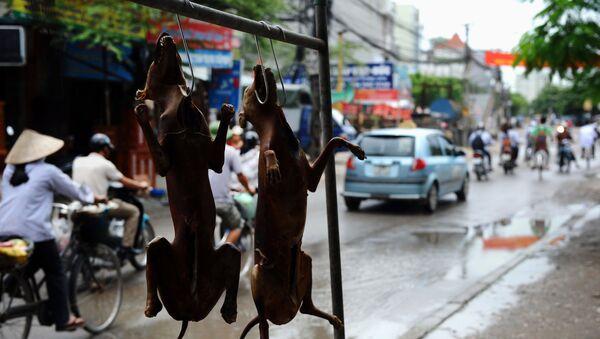 Chó thui ở một quán ăn trên đường phố Hà Nội, Việt Nam - Sputnik Việt Nam