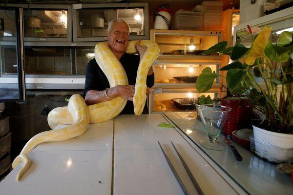 Người yêu thích bò sát 67 tuổi Philippe Gillet với con trăn tại nhà của ông ở thành phố Couëron, Pháp - Sputnik Việt Nam