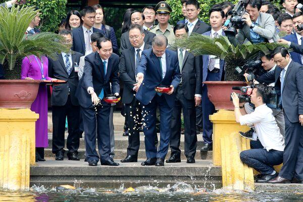 Tổng thống Hàn Quốc Moon Jae-in và Chủ tịch nước Việt Nam Trần Đại Quang cho cá ăn trong ao bên cạnh Phủ Chủ tịch tại Hà Nội - Sputnik Việt Nam