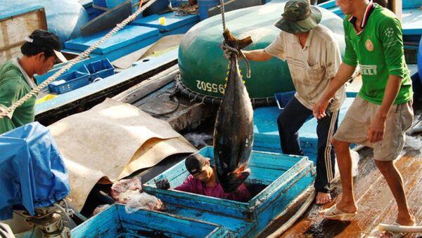 """Dự kiến ngày 31/10, đoàn Ủy ban Nghề cá Nghị viện châu Âu và tháng 1/2019, đoàn Thanh tra của Ủy ban châu Âu sẽ sang Việt Nam để kiểm tra việc khắc phục """"thẻ vàng"""" thủy sản từ EU. - Sputnik Việt Nam"""