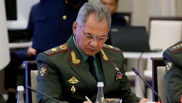 Bộ trưởng Quốc phòng Sergei Shoigu  - Sputnik Việt Nam