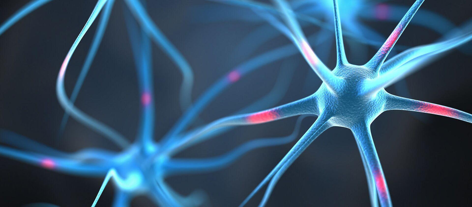 Tế bào thần kinh trong não người. - Sputnik Việt Nam, 1920, 18.09.2021