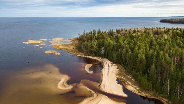 Bãi cát của hồ Onega và cửa sông Puhta ở Cộng hòa Karelia - Sputnik Việt Nam