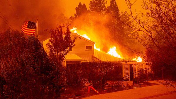 cháy rừng ở California - Sputnik Việt Nam