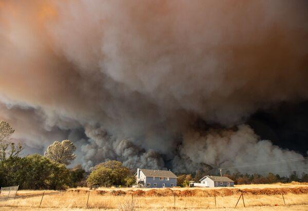Khói từ đám cháy rừng ở thành phố Paradise, California, Hoa Kỳ - Sputnik Việt Nam