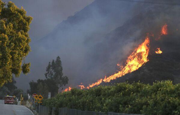 Đám cháy lan rộng trên ngọn đồi gần Newbury Park, California - Sputnik Việt Nam