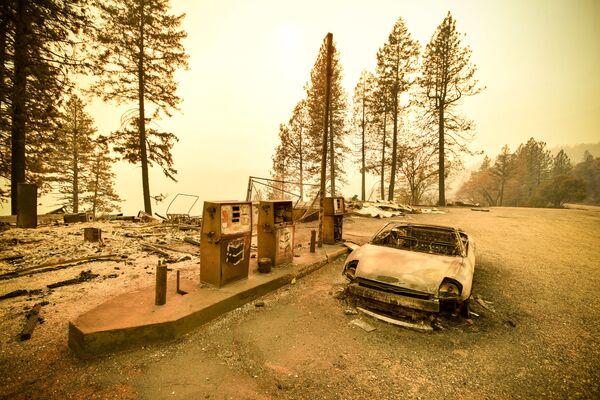 Hậu quả của cháy rừng ở California, Hoa Kỳ - Sputnik Việt Nam