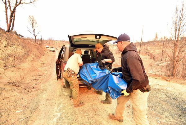 Cảnh sát thu dọn thi thể các nạn nhân trong vụ cháy rừng ở California, Hoa Kỳ - Sputnik Việt Nam