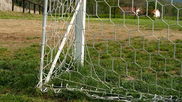 Con chó chạy ra sân đã cứu bàn thua cho đội bóng trong giải vô địch Argentina - Sputnik Việt Nam