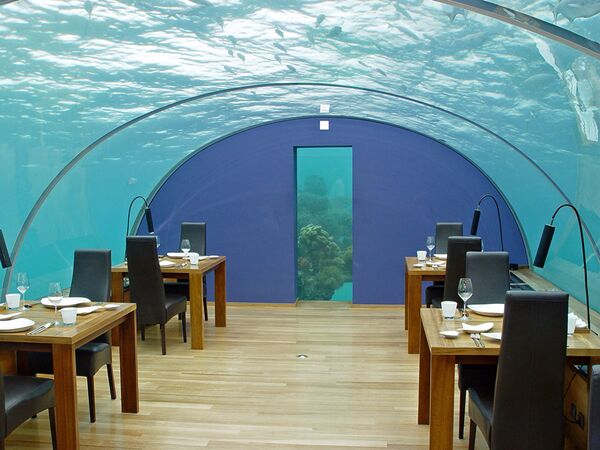 Nhà hàng Ithaa Undersea Restaurant ở Maldives. Phòng tiệc bố trí dưới mái vòm trong suốt ở độ sâu khoảng năm mét. - Sputnik Việt Nam