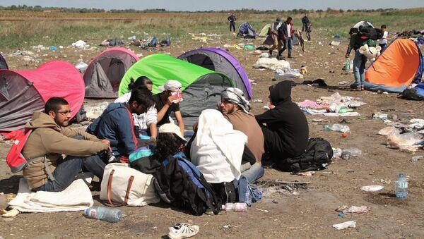 Người tị nạn trên biên giới Serbia-Hungary - Sputnik Việt Nam