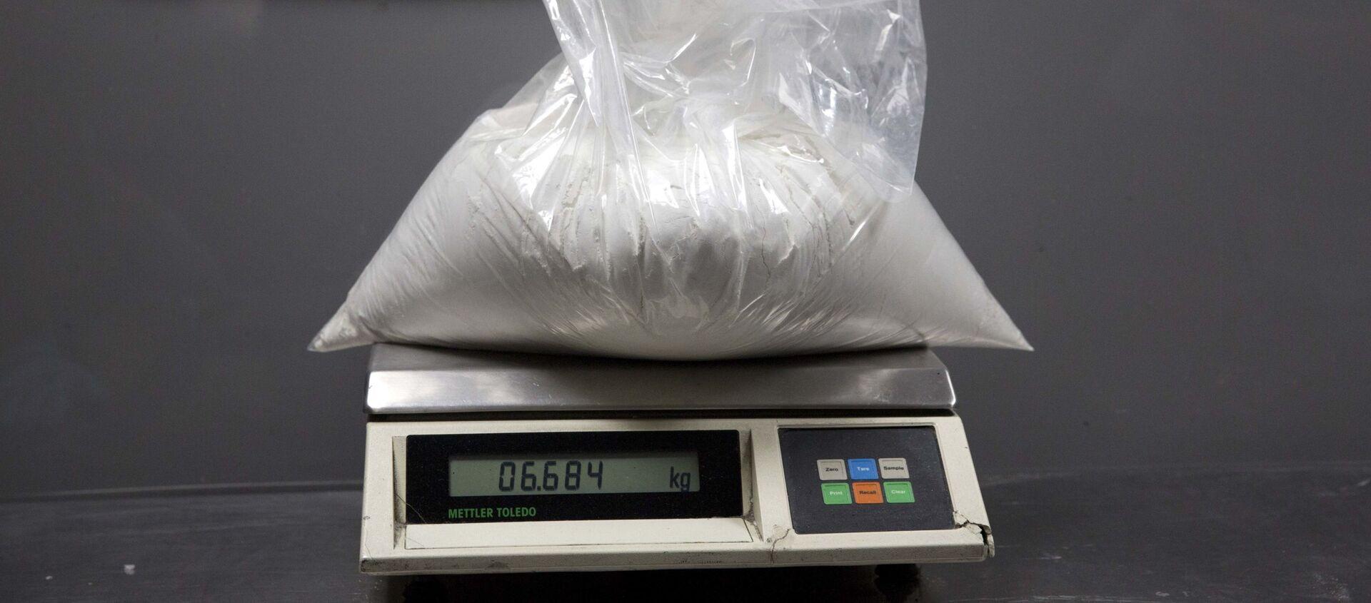 Cảnh sát ma túy bắt giữ một túi cocaine - Sputnik Việt Nam, 1920, 20.02.2021