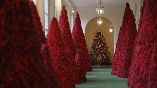 Cây quả đỏ trong Nhà Trắng, Washington - Sputnik Việt Nam