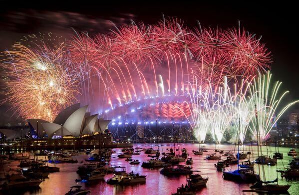 Pháo hoa Năm Mới ở Sydney - Sputnik Việt Nam