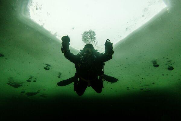 Lặn xuống dưới băng ở ngoại ô Moskva - Sputnik Việt Nam
