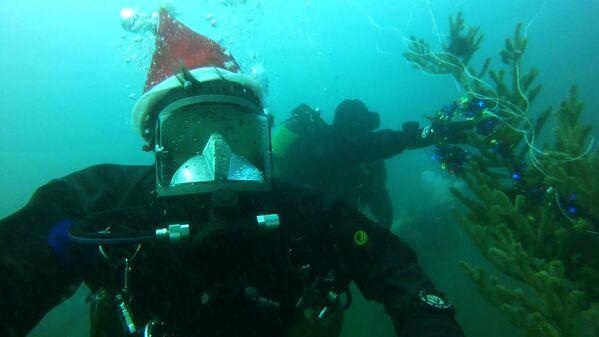 Nhóm thợ lặn diving mừng năm mới ở dưới đáy eo biển Đông Bosphorus, vịnh Piotr Veliky ở Vladivostok - Sputnik Việt Nam