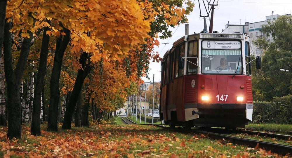 Трамвай на одной из улиц в Вологде