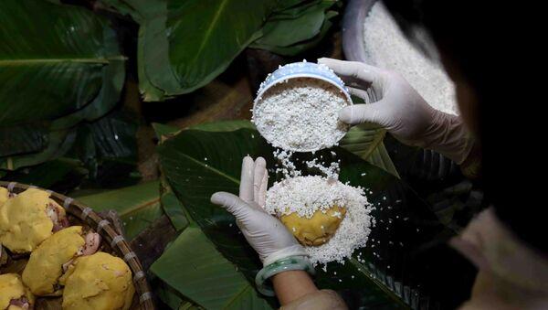 Bánh chưng của làng nghề thường được gói bằng tay, rất vuông và đẹp mắt. - Sputnik Việt Nam