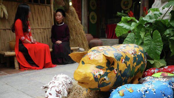 Chú lợn, linh vật biểu tượng của năm Kỷ Hợi tượng trưng cho cuộc sống no đủ, sung túc. - Sputnik Việt Nam