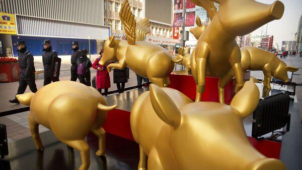 Tượng lợn vàng vinh danh năm mới theo lịch phương Đông ở Bắc Kinh - Sputnik Việt Nam