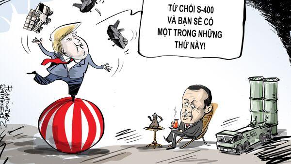 Lựa chọn rõ ràng - Sputnik Việt Nam