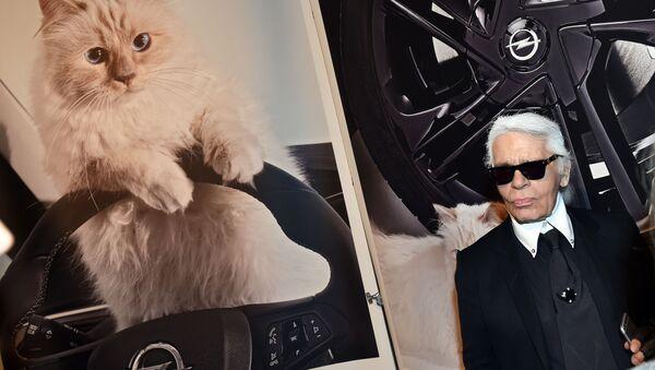 Сon mèo Choupette của nhà tạo mốt Lagerfeld - Sputnik Việt Nam