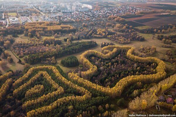 Công viên thực vật gần Krasnoyarsk vào mùa thu - Sputnik Việt Nam