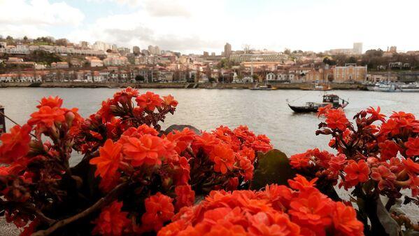 Sông Douro ở Porto - Sputnik Việt Nam