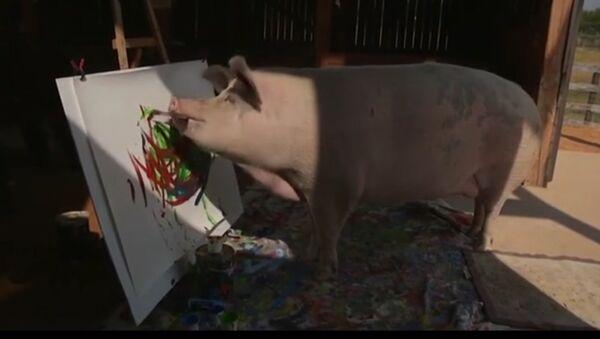 Họa sĩ lợn mê hoặc giới yêu thích nghệ thuật - Sputnik Việt Nam