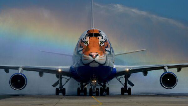 Máy bay Boeing 747-400 của hãng hàng không Transaero  sơn màu lông hổ trong đề án Chuyến bay lông vằn. - Sputnik Việt Nam