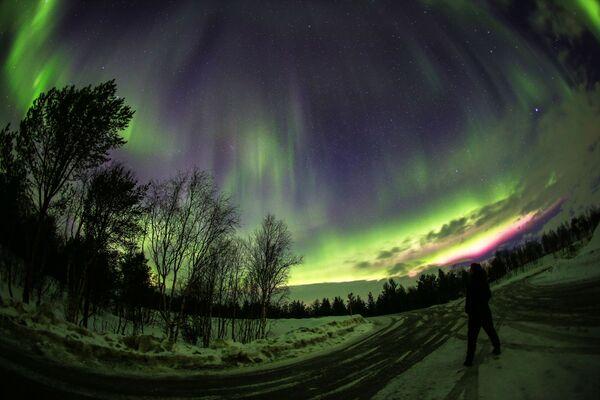 Ánh cực quang trên sông Ury, tỉnh Murmansk, Nga - Sputnik Việt Nam