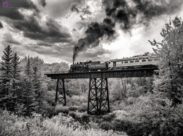 Bức ảnh On the Way Home (Trên đường về nhà) của nhiếp ảnh gia Ken Slute, được ghi nhận trong hạng mục IR Black & White (Ảnh đen trắng) của cuộc thi ảnh Life in Another Light. - Sputnik Việt Nam