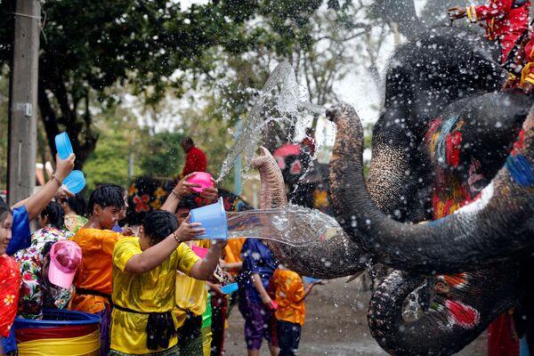 Người và voi tưới nước trong lễ mừng năm mới của người Thái - Sputnik Việt Nam