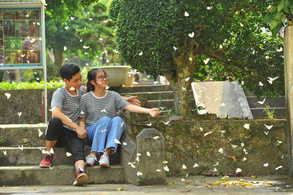 Mùa bướm rừng Cúc Phương như một điểm đến mới của những người yêu du lịch, nơi đây thu hút đông du khách trong và ngoài nước.   - Sputnik Việt Nam