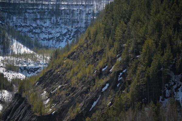 Khu vực xung quanh mỏ ngọc lục bảo Mariinsky Priisk ở tỉnh Sverdlovsk - Sputnik Việt Nam