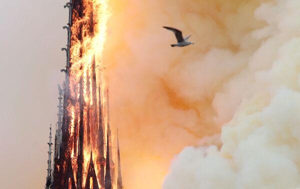 Ngọn lửa từ đám cháy ở Nhà thờ Đức Bà Paris - Sputnik Việt Nam